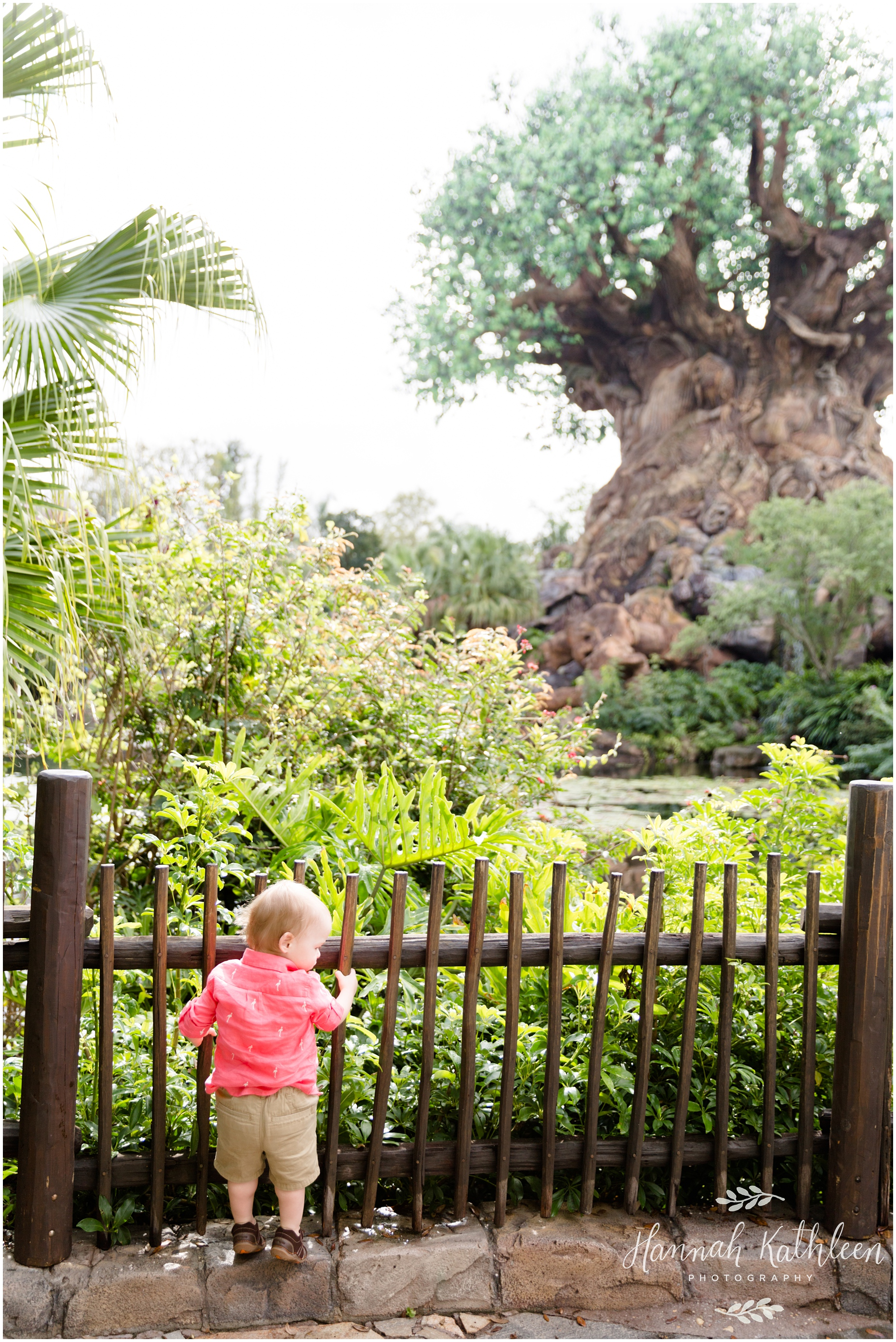 Masterson_Disney_Parks_Family_Animal_Kingdom_Disneyland_Photographer